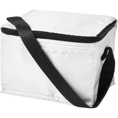Image of Cooler bag made from 210D polyester